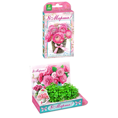 """Подарочный набор для выращивания Живая открытка """"Букет роз"""""""