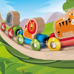 Поезд Джунгли